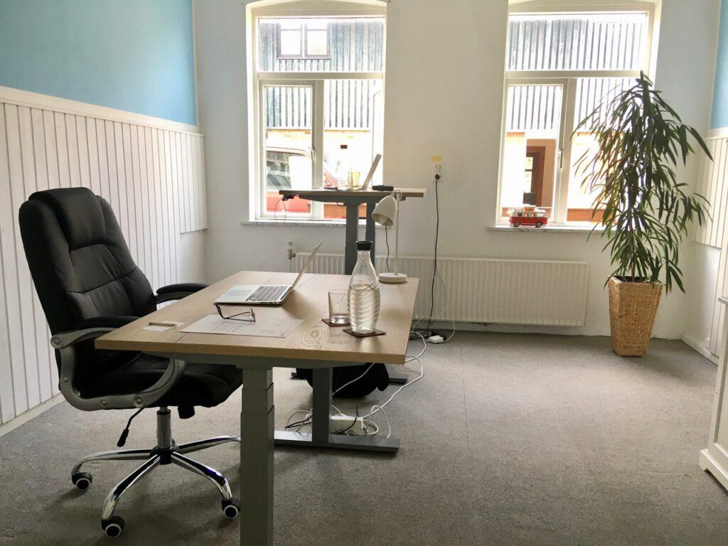 Arbeitsraum mit Sitz-Stehschreibtischn im CoWorking Schlei